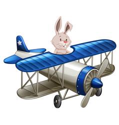 A rabbit riding plane vector