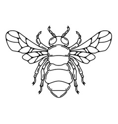 Bee in line style isolated on white vector