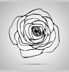 detailed outline rose simple black icon vector image