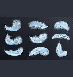 Falling blue fluffy twirled feather set vector