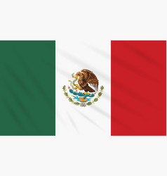 Flag mexico swaying in wind realistic vector