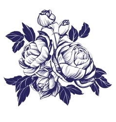 Floral blooming rose branch vector