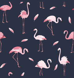 Pink flamingo birds flock feather seamless pattern vector