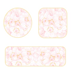 Sakura banners and buttons with a flowers i vector image