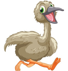 Emu cartoon vector image