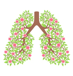Lungs healthy vector