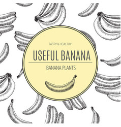 seamless patternbananas of sketches vector image