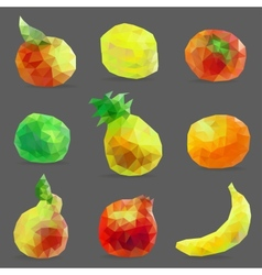 set low poly fruits vector image