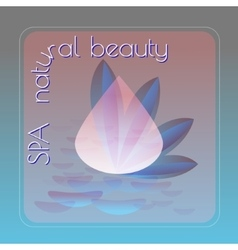 Spa natural beauty theme vector image