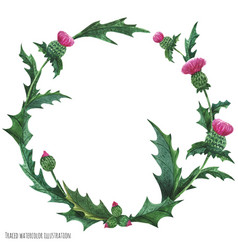 Wreaths from thistle for decoration vector