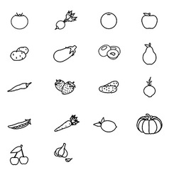 Fruit and vegetable vector image