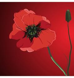 red flower poppy memorial vector image vector image