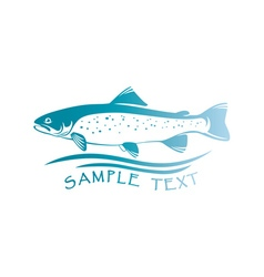 fish trout vector image vector image