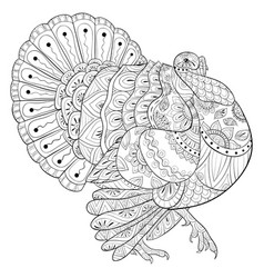 Adult coloring bookpage a cute turkey image vector