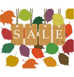 autumn seasonal sale background with beige price vector image