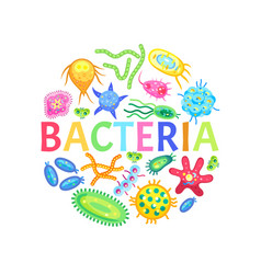 bacteria and other microorganisms color poster vector image