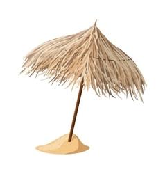 Beach umbrella from cane vector image