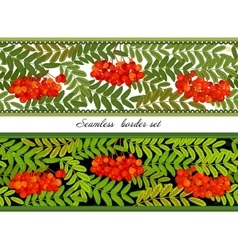 Border of bunches rowan and leaves Seamless vector image