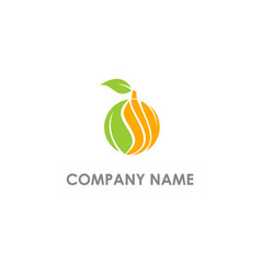 Eco fruit leaf nature logo vector