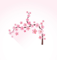 Flat abstract blossom sakura branch icon vector