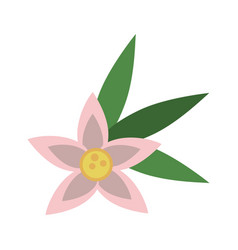 flower with leaves icon image vector image