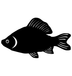 Silhouette of crucian vector image