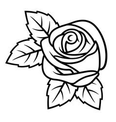 rose sketch 003 vector image vector image