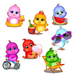 a set of cute little multicolored chicks having vector image