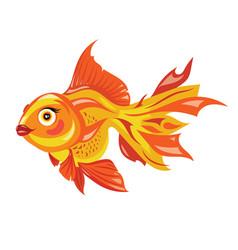 Cartoon goldfish stylized goldfish aquarium fish vector