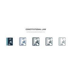 constitutional law icon in different style two vector image