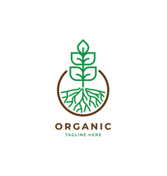growth plant logo template vector image