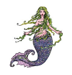 Hand drawn of a Beautiful mermaid girl isolated vector image vector image