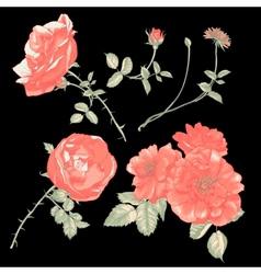 Set floral design elements vector