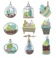 Succulents Icons Set vector