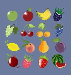 Fruit Icons Set vector image vector image