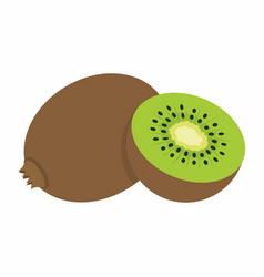 kiwi on white background vector image