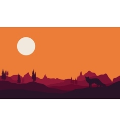 Silhouette of fox in hills vector image vector image