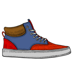modern red sneakers vector image