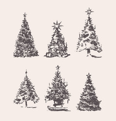 set drawn christmas trees vintage sketch vector image vector image