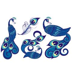 beautiful peacocks vector image