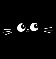 cat eyes moustaches in dark head face vector image