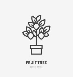 lemon tree flat line icon gardening thin vector image