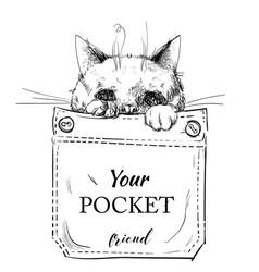 little purebred cat in pocket vector image