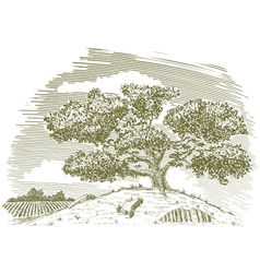 Tree on a Hill Drawing vector image