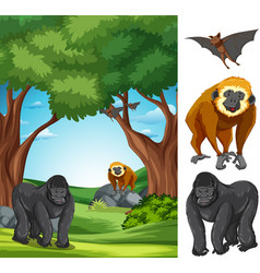 ape in the nature landscape vector image