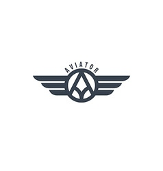 aviator wing theme vector image