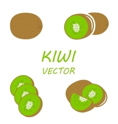 flat kiwi icons set vector image