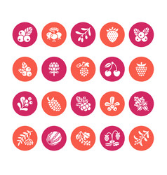 forest berries colored flat glyph icons vector image