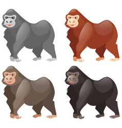 gorillas in different colors vector image