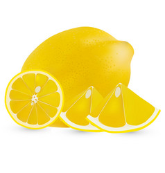 realistic whole lemon and half a lemon vector image